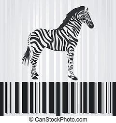 Zebra - The horse a zebra costs on a stroke a code. A vector...