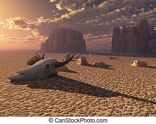 Skull in desert sunset