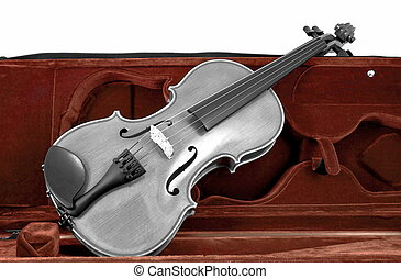 Black and white Violin in red brown case