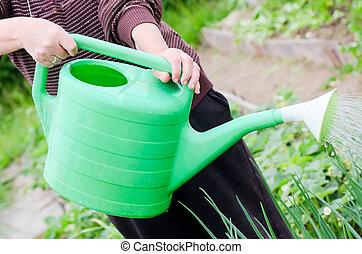 The elderly woman works on a kitchen garden