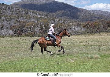female horse rider