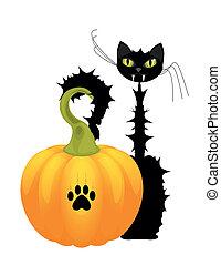 Halloween cat with orange pumpkin