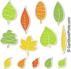 Set of leaves.