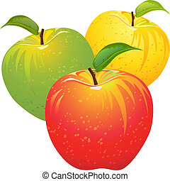 vector set of colorful apples