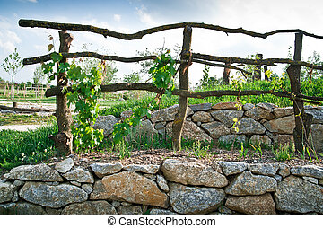 Grapevine Trellis on terrace - Wooden Grapevine Trellis on...