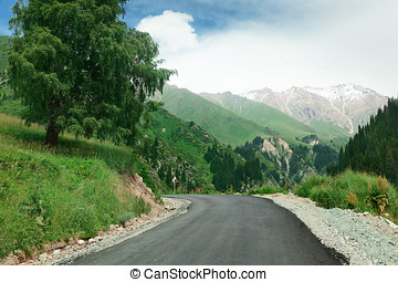 Mountain road - Asphalt road in mountains at clear summer...