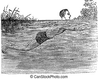 Breaststroke, Fifth Position, vintage engraved illustration