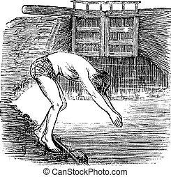 Position Before Diving, vintage engraved illustration....