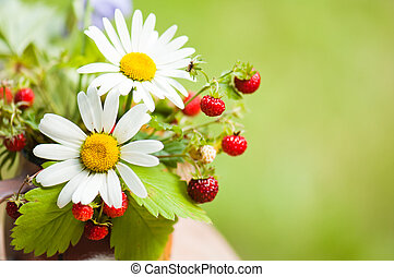 camomile and wild strawberry - Bouquet from a camomile and...