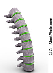 3d part of spine isolated white background