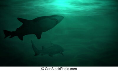 Underwater scene with sharks, hd - Underwater scene with...