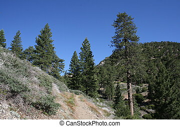 PCT Mt. Williamson 4 - View from the Pacific Crest Trail on...