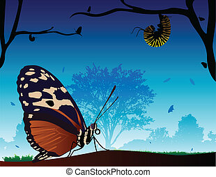 Butterfly World - A beautiful scenery of butterfly\'s. One...
