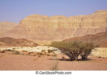 Unique park Timna in desert Arava near to the well-known sea...