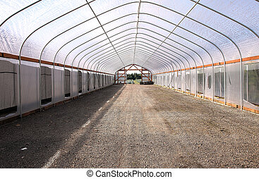 Empty space, greenhouse - Empty greenhouse structure, plant...