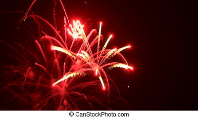 Beautiful fireworks on a holiday