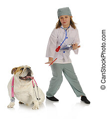 veterinary care - english bulldog and child playing doctor