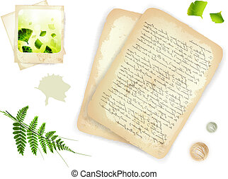 Vintage objects: 18th century letter, old nature photo and...