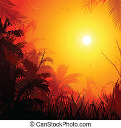 jungle background - jungle sunset background