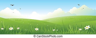 nature landscape - spring nature landscape
