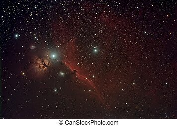 Horse Head and Flame - The Horse Head and Flame nebulae in...