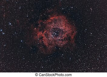 Rosette Nebula - Rosette Nebula, also known as Caldwell 49...