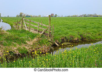 Agriculture in Holland - Farm fence in Dutch landscape with...