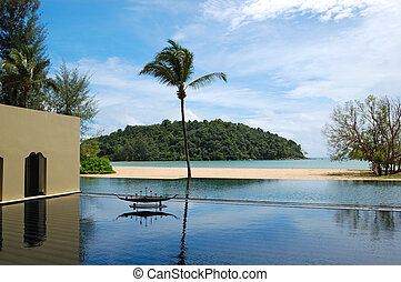 Palm tree at the beach and swimming pool, Phuket, Thailand