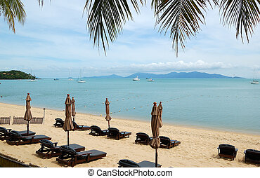 Beach with sunbeds at modern luxury hotel, Samui island,...