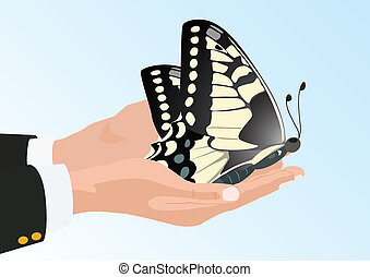 Butterfly in his hands - butterfly sits in the hands of man