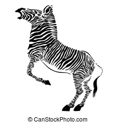 zebra - vector - Vector illustration of the zebra - African...