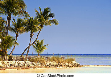 Key West Beach Scene - A beach and some tables on in island...