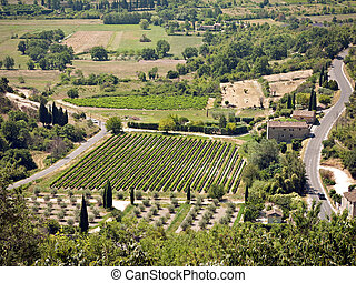 Provence - birds-eye view - Shows cypress and olive trees,...