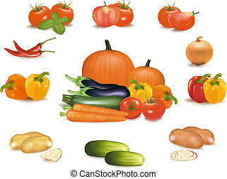 The big colorful group of vegetables. Photo-realistic...
