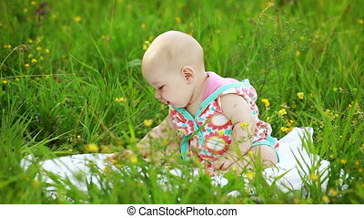Newborn baby sitting in the meadow