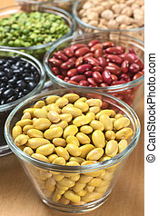 Canary beans and other legumes black beans, kidney beans,...