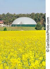biogas, planta, violación, campo, 02