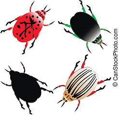 Set of insects - Set of vector illustration of insects on...