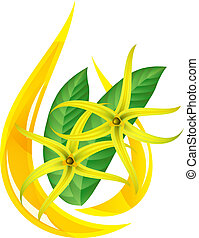 Essential oil of ylang-ylang. Stylized drop. Vector...