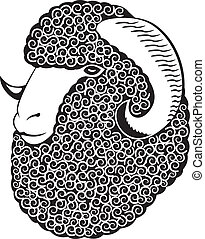 Portrait of a merino sheep Black and white vector art