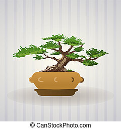 Bonsai Tree - Asian Bonsai tree illustration drawn as vector...