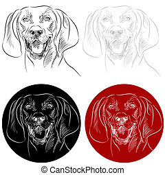 Redbone Coonhound Dog Portrait - An image of the face of a...
