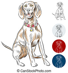 Redbone Coonhound - An image of a Redbone Coonhound dog.