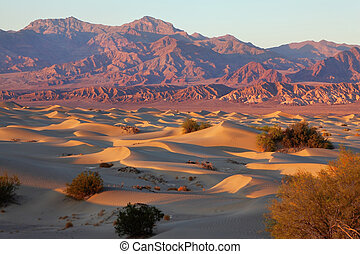 A place in Death Valley - Mesquite Flat - A unique place in...