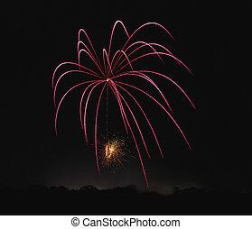 Burst of Pink - Burst of spidery pink fireworks
