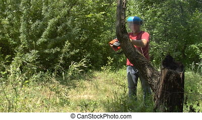 chainsaw work - a man cutting wood with chainsaw