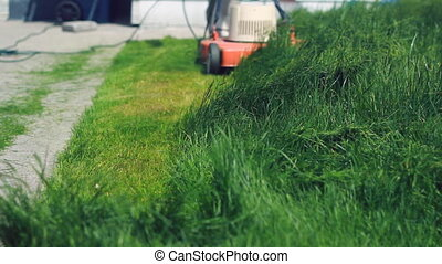 Cutting long grass.