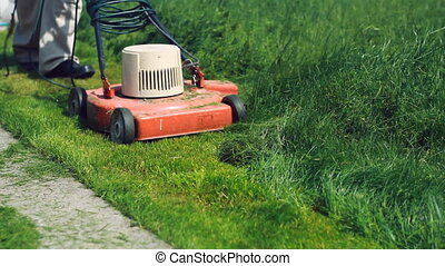 Cutting long grass. Diagonal. - Orange electric mower doing...