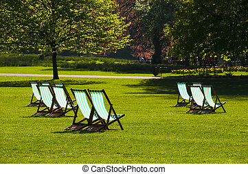 Deck chairs in a park