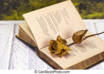 Vintage poetry book with dead rose; lying on table against...